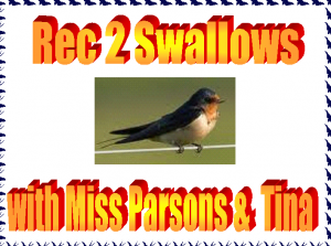Swallows label